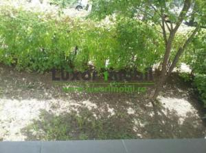 157266541_5_644x461_apartament_cu_1_camera_cug_iasi_rev002.jpg